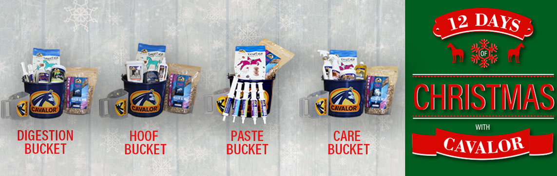 Cavalor Buckets on sale for the Holidays. Stock up on your favorites, or give a new brand of horse supplies a try with FarmVet.