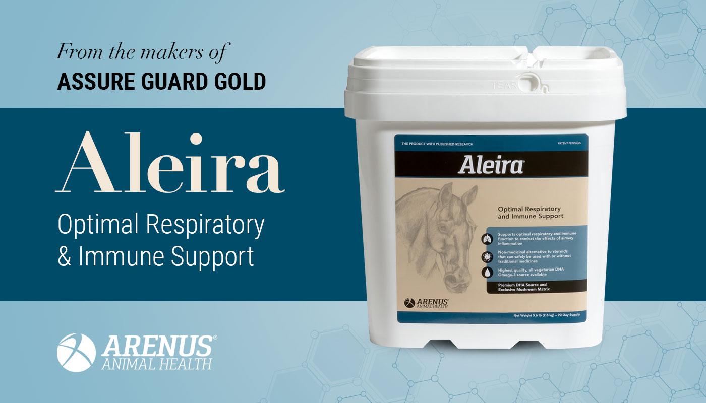 Aleria from Arenus