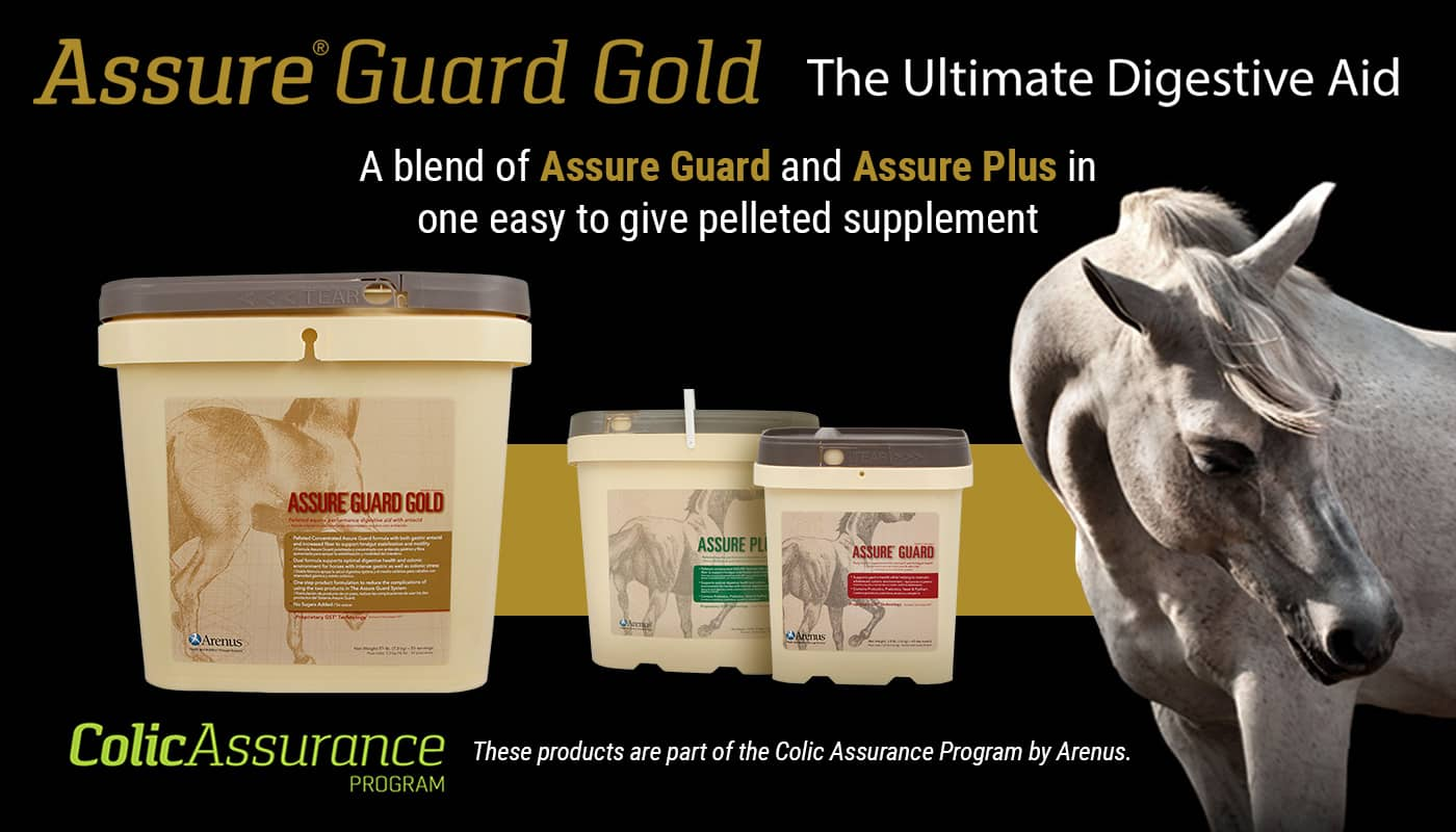 AssureGuard Gold