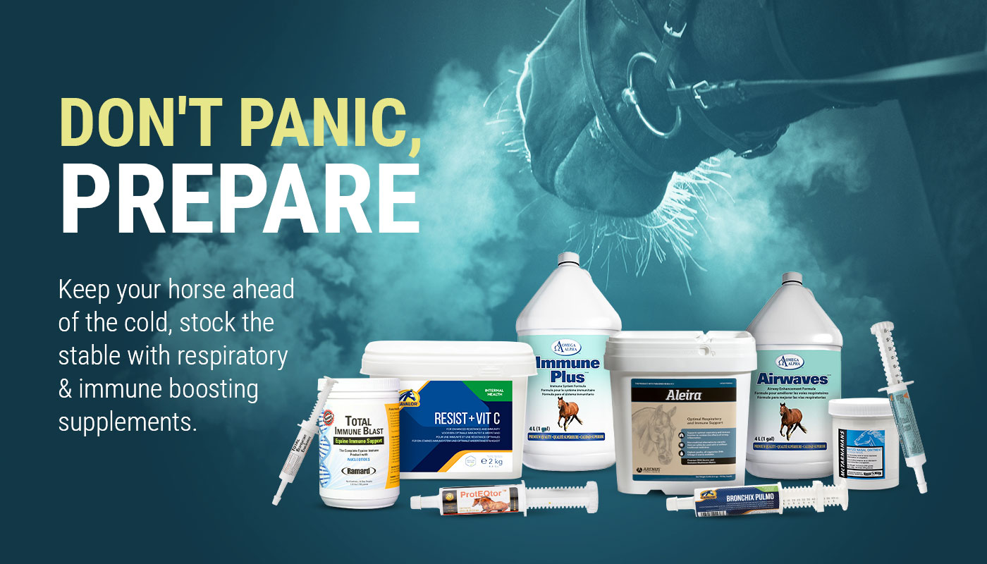 Respiratory Supplements for Horses