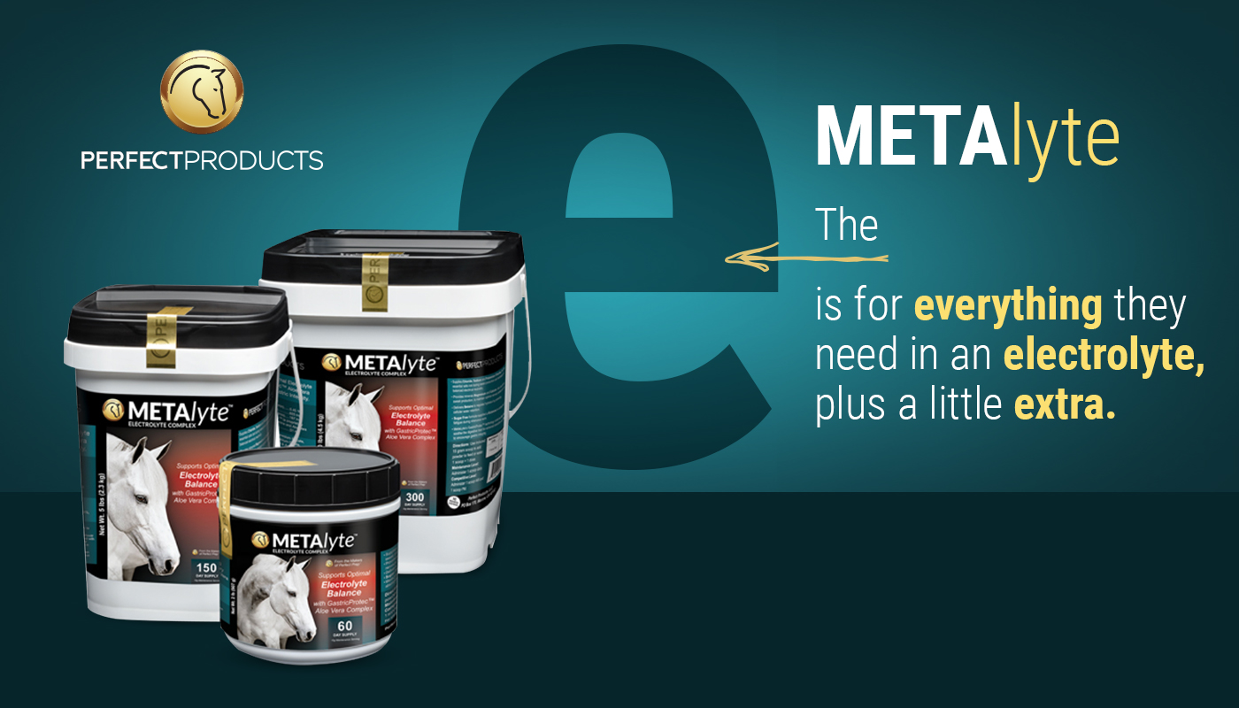 MetaLyte Electrolyte for Horses