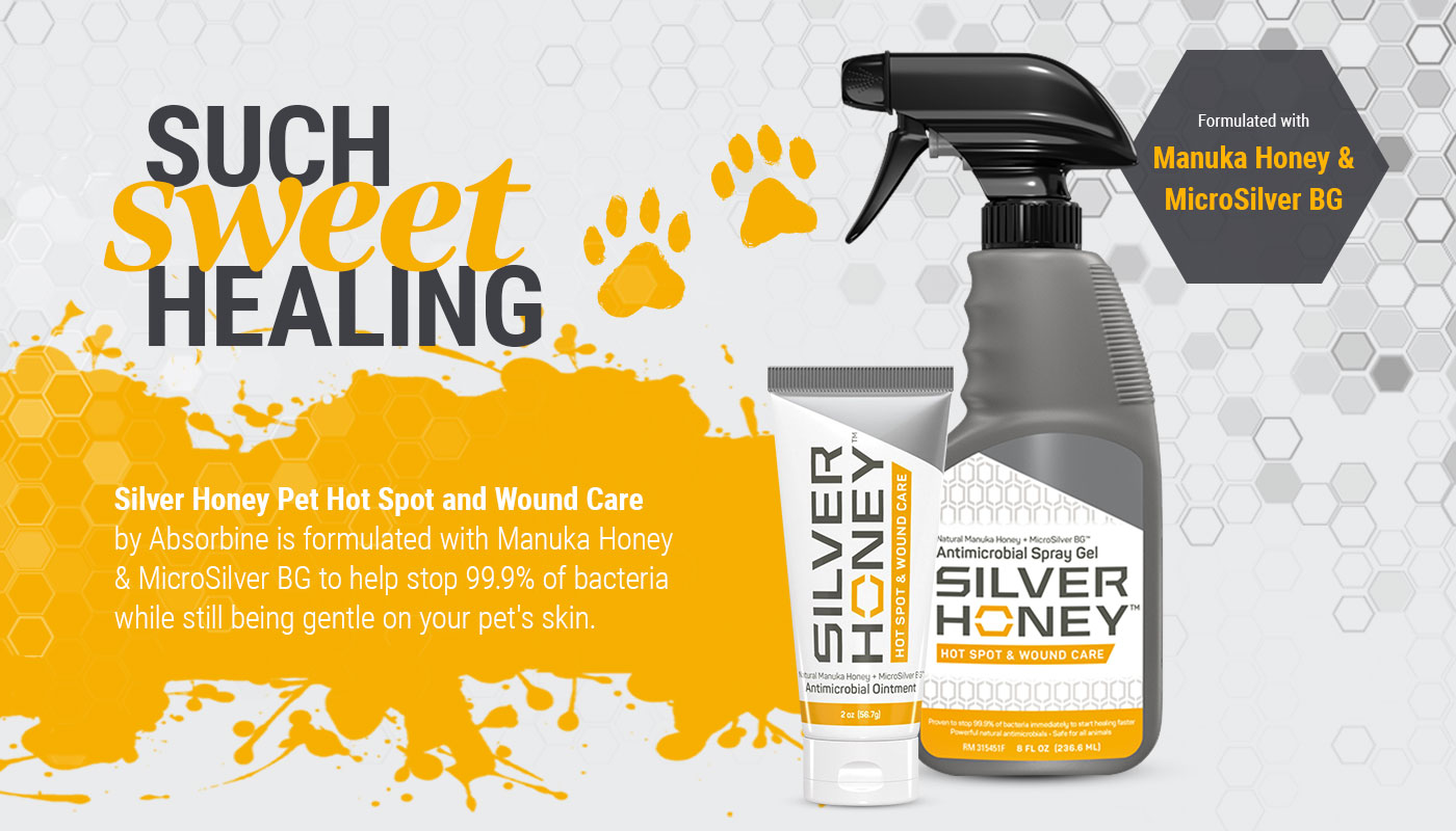 Silver Honey for Dogs