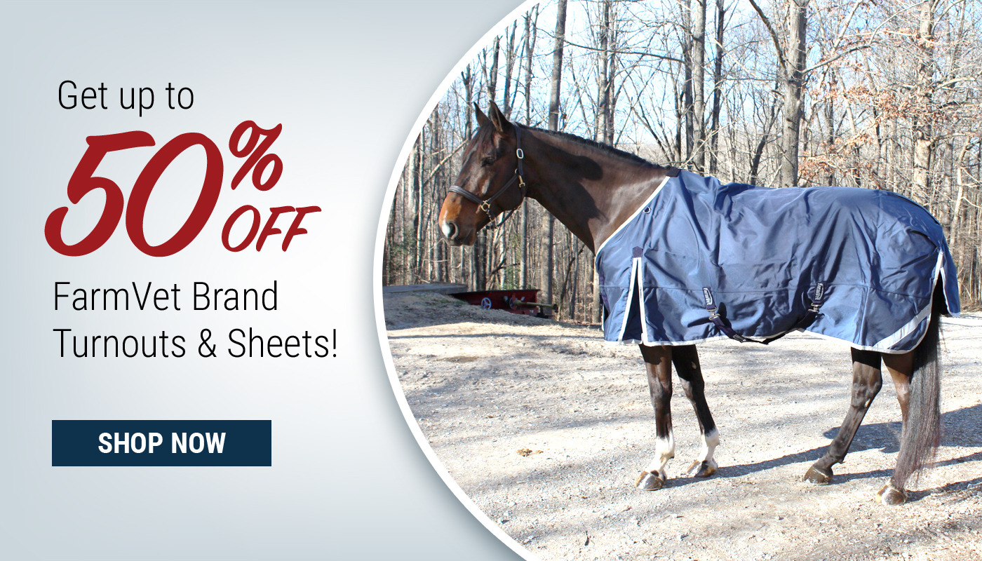 Horse Blankets on Sale