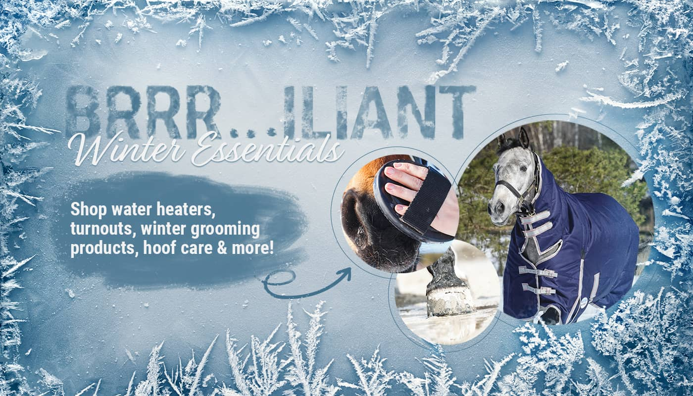 Winter Horse Products