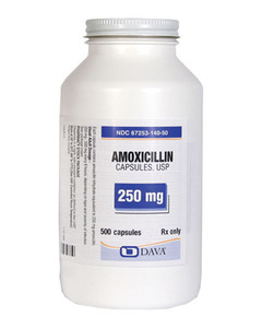 Comprare Online Generico Amoxil 250 mg