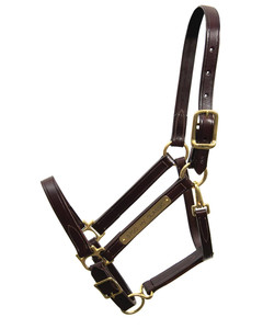 Walsh Classic Leather Halter