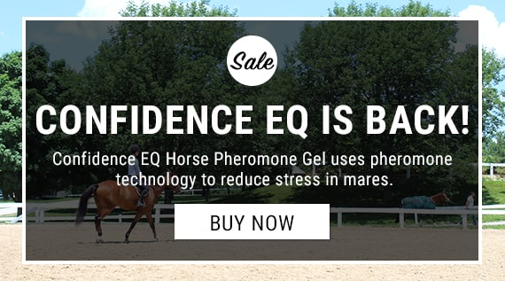 Confidence EQ for Mares available at FarmVet