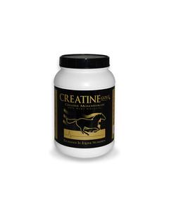 Creatine Gold 5 lbs
