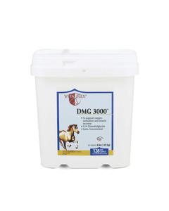 DMG 3000