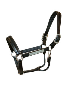 Walsh Dressage Halter