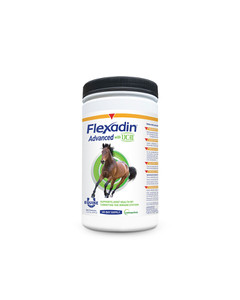 Equistro Flexadin Powder