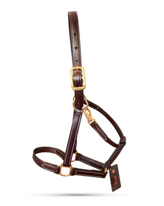 FarmVet Heritage Halter by Walsh