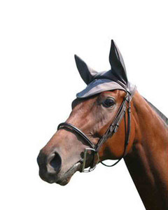 Fenwick Equestrian Therapeutic Ear Bonnet for horses