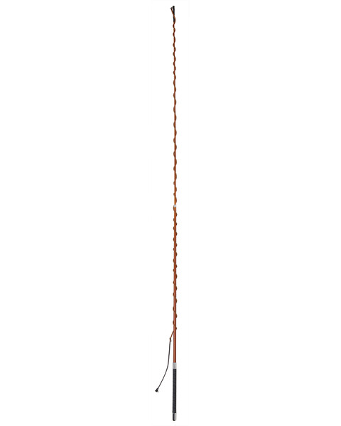 CARBON Telescoping Lunge Whip