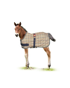 Baker Expand-O-Blanket Foal or Pony Turnout
