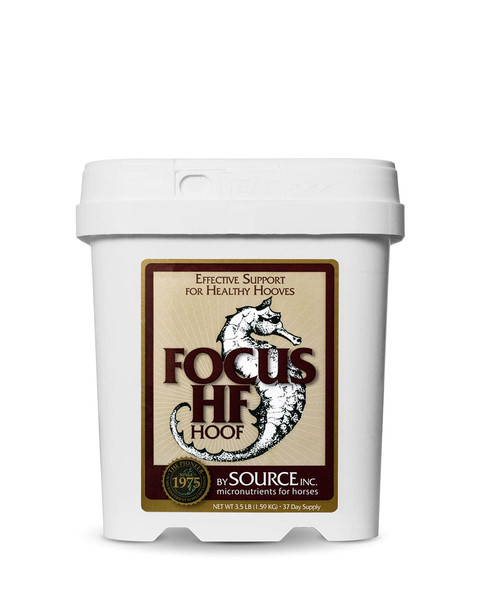 SOURCE Focus HF