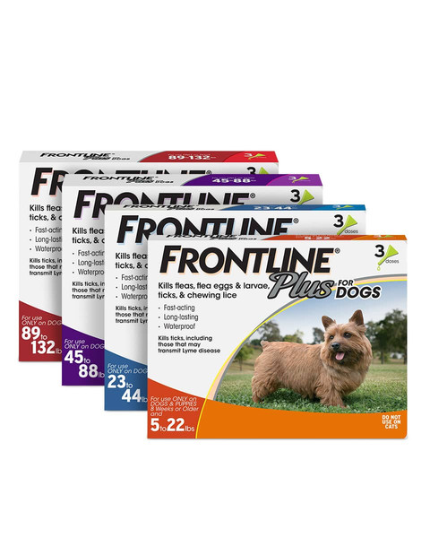Frontline for dogs