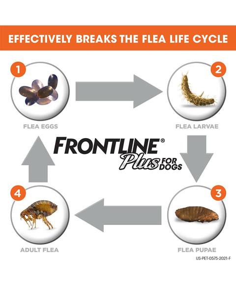 Frontline Plus - 3 Dose flea & tick control for dogs