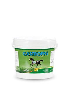 Gastrofos