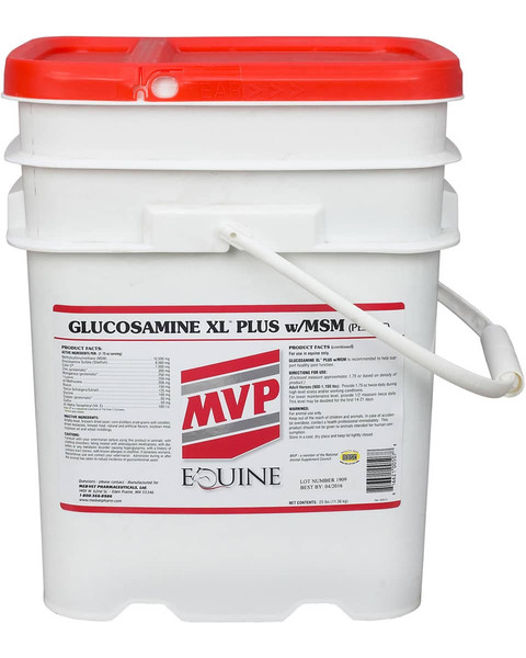 joint supplement for horses