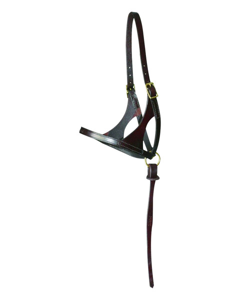 Walsh Grow With Me Foal Halter