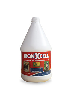 Iron-X-Cell