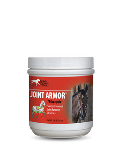 Joint Armour