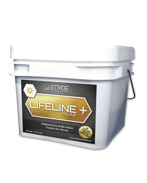 Lifeline Supplement for horses