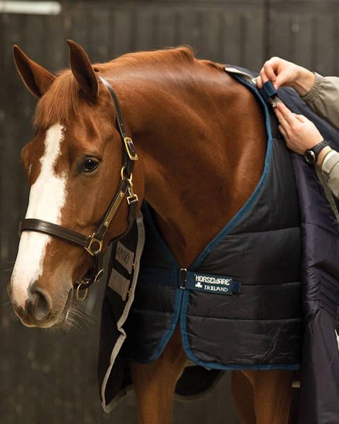 Blanket Sizing Chart