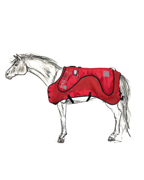 MagPro Plus PEMF and heat therapy Blanket for horses by Sport Innovations