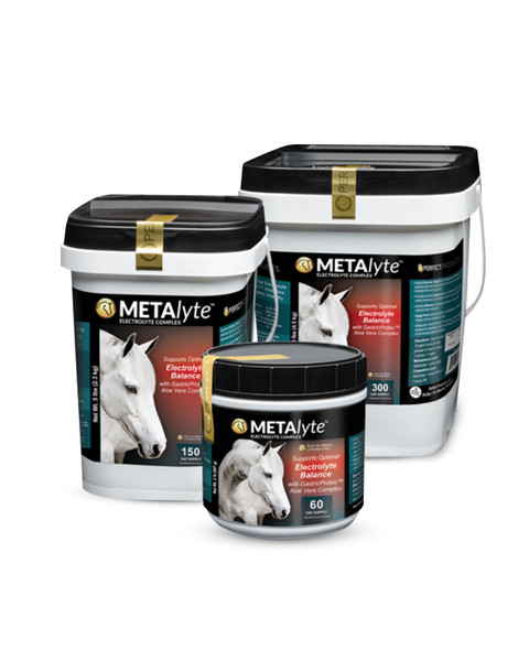 MetaLyte electrolyte for horses from Perfect Products