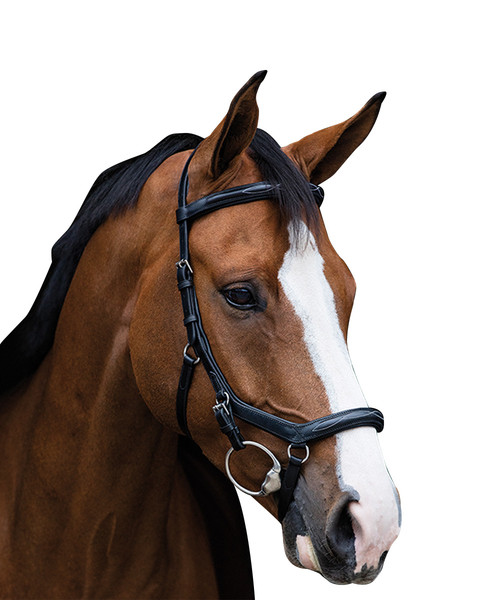 Micklem Deluxe Competition Bridle