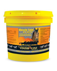 Muscle Tone for Horses