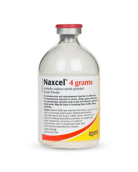 Naxcel antibiotic