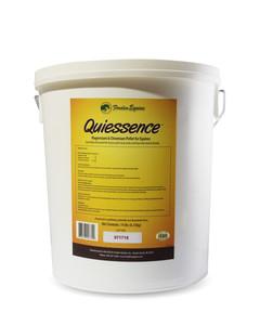 Quiessence