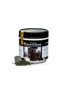sane and sound performance horses