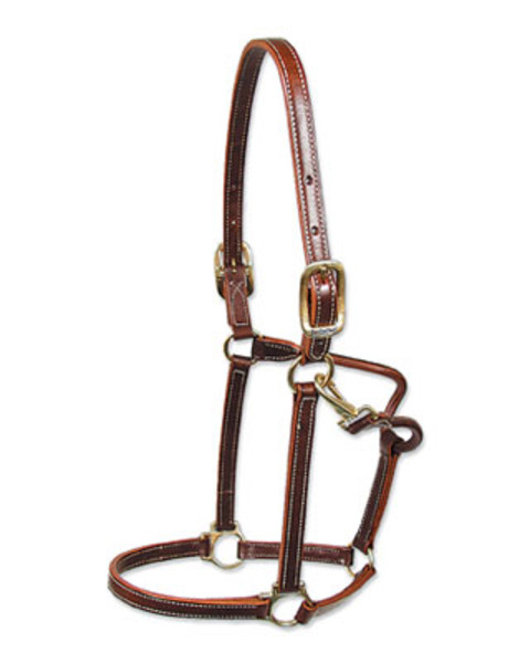 Walsh Showman Halter