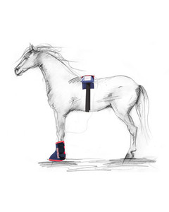 Sports Innovations Hoof Boots