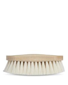 Tampico Brush